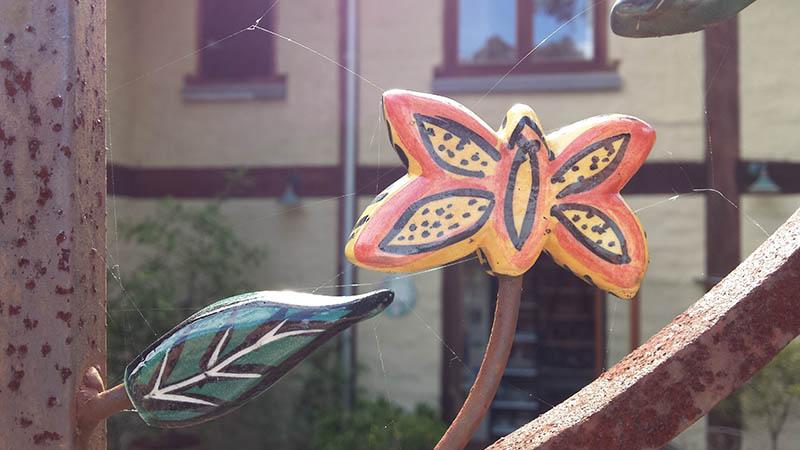 butterflyongate