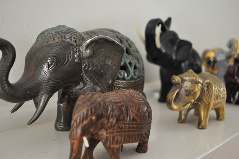 elephantjourneyadjust800